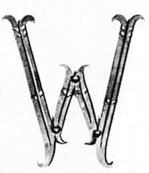 Buchstaben W